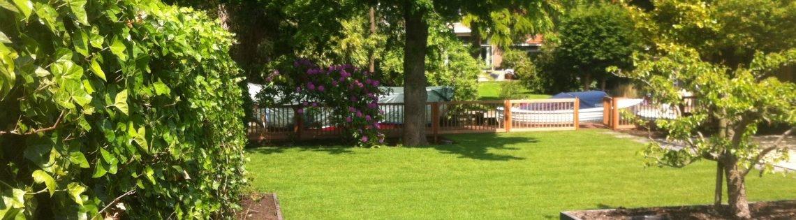 Tuin met gras Tuinontwerp Noord-Holland